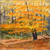 New Forest Beech, greetings card