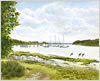 Beaulieu River from Gilbury, printed from watercolour painting by Peter Thwaites