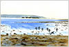 from Keyhaven Marshes, printed from watercolour painting by Peter Thwaites
