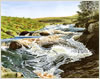 Blackwater Burn, print from watercolour landscape painting