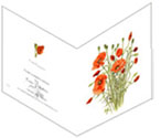 Field poppies, greetings card by Peter Thwaites